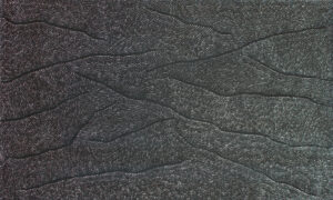 AM 16528/19