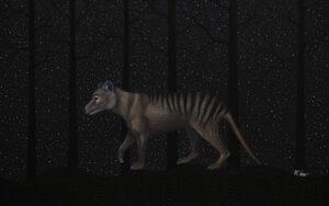 Thylacine by Reuben Oates