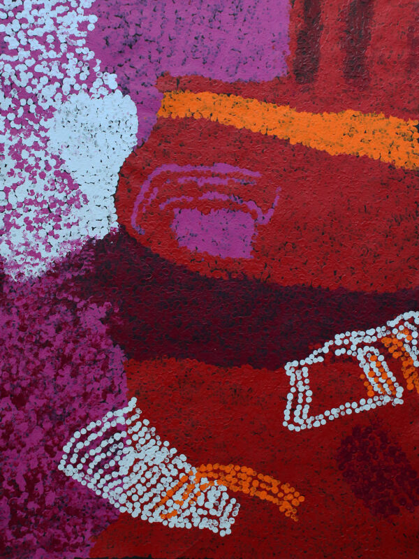 Waltitjatja (My Mother's Country) by Tommy Yannima Watson
