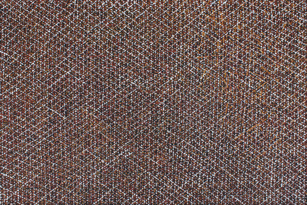 Minga (Tiwi name for dots) by Alison Puruntatameri