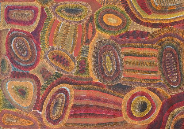 Ngapa Jukurrpa (Water Dreaming)- Mikanji by Agnes Nampijinpa Brown